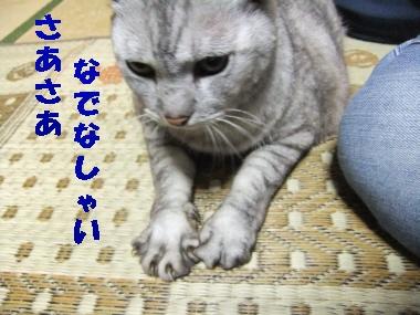DSCF42740.jpg