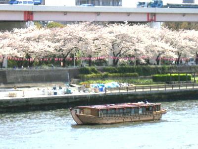 桜橋花まつり
