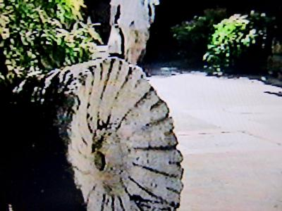 胡粉を挽いていた名残の石臼