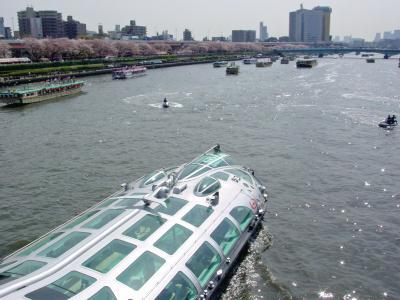 桜橋を通過するヒミコ