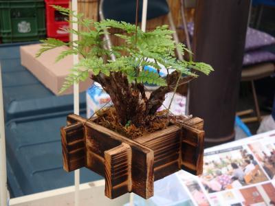 お富士さんの植木市 ⑦
