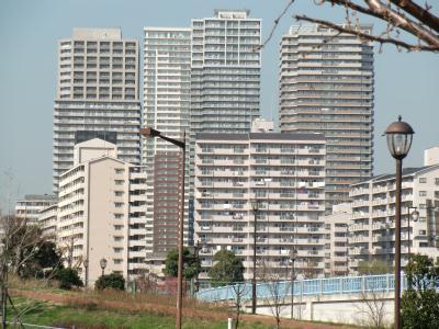 再開発で建設されたマンション群
