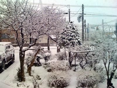 いらない雪
