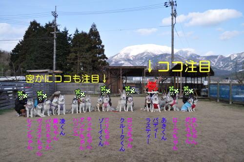 2010122642.jpg