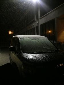 3月29日 雪