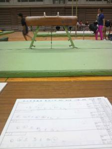 20100710国体予選