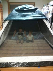 今夜はテントで