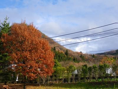 秋は深まって