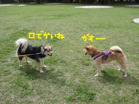 ichi104c.jpg
