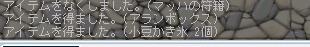 20091218あらんぼkっくす2