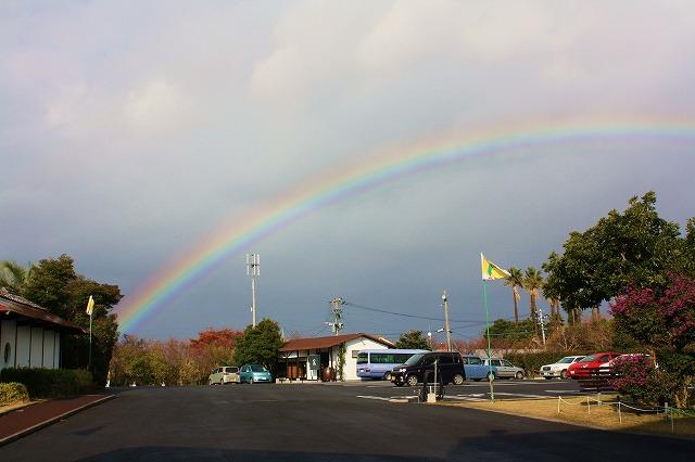 縁起がいいね!!大きな虹のプレゼント
