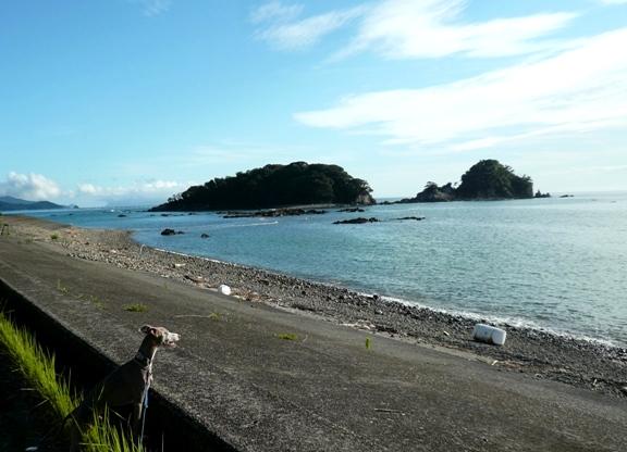 午後5時。咸陽島は海の向こうでした