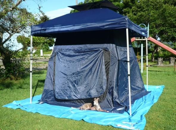 朝7時過ぎのテント内は、チワとディオがヘーヘーするほど暑かった。。