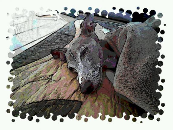 2012-03-06 16_40_24