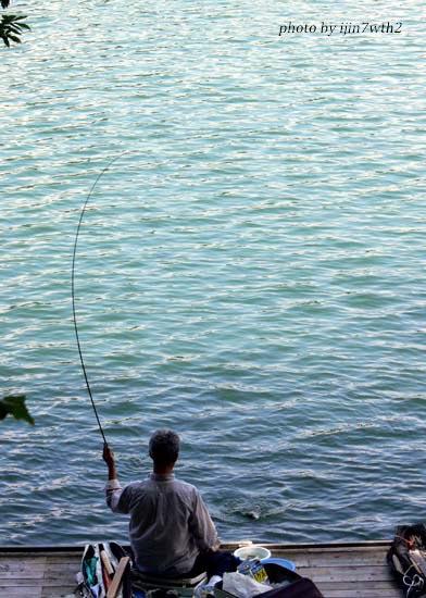 10fishing03.jpg