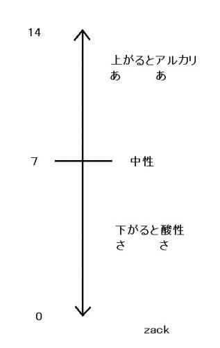 3-50.jpg
