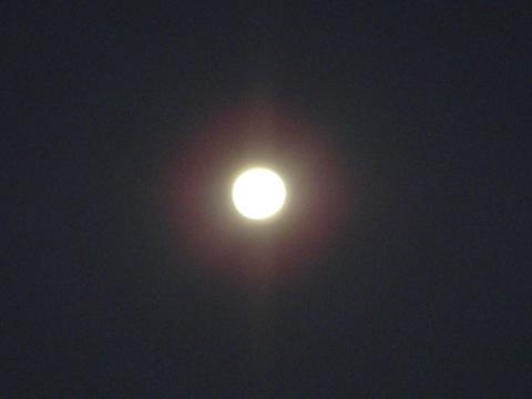 20101120moon.jpg
