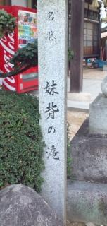 110101-2.jpg