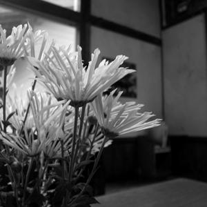 simokuno8.jpg