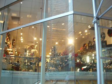 NY.Nov.2009 133
