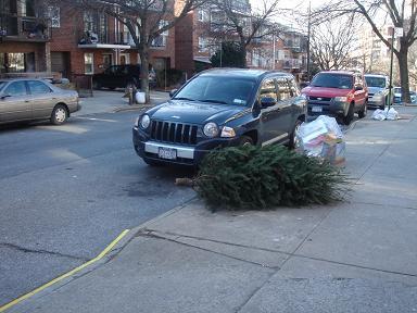 NY.Jan.2010 004