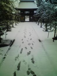 雪の境内への参拝者達の足跡