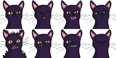 blackcat_exp2