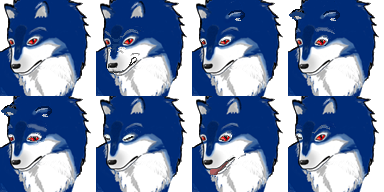 wolf_001_exp