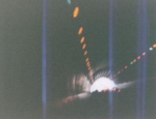 20001113.jpg
