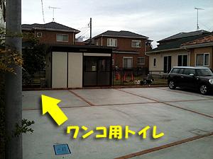 新犬護舎02