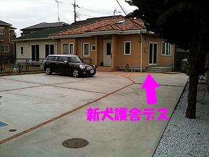 新犬護舎03