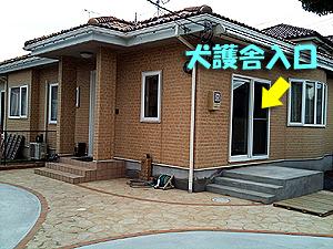新犬護舎04
