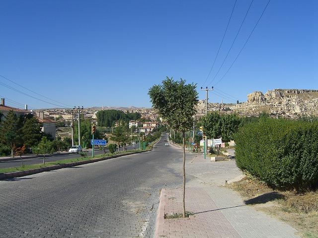 トルコとギリシャ 502