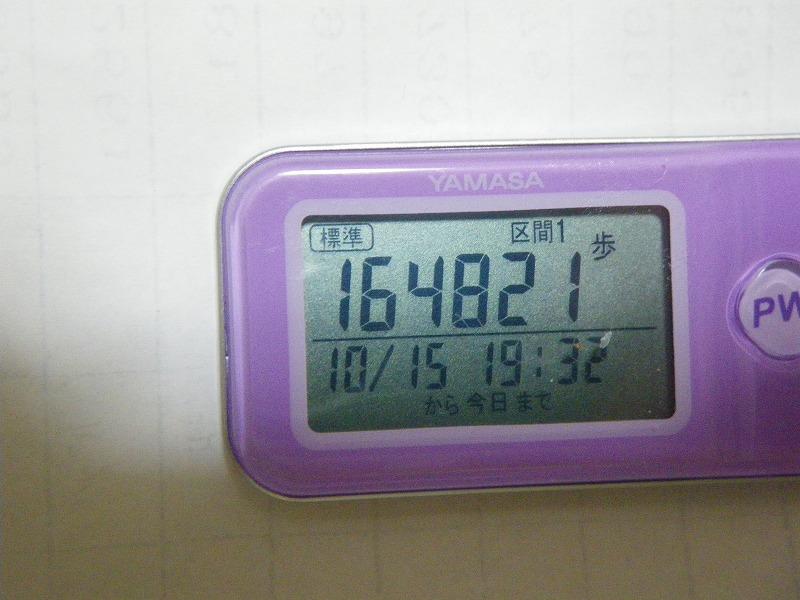 IMGP0734.jpg