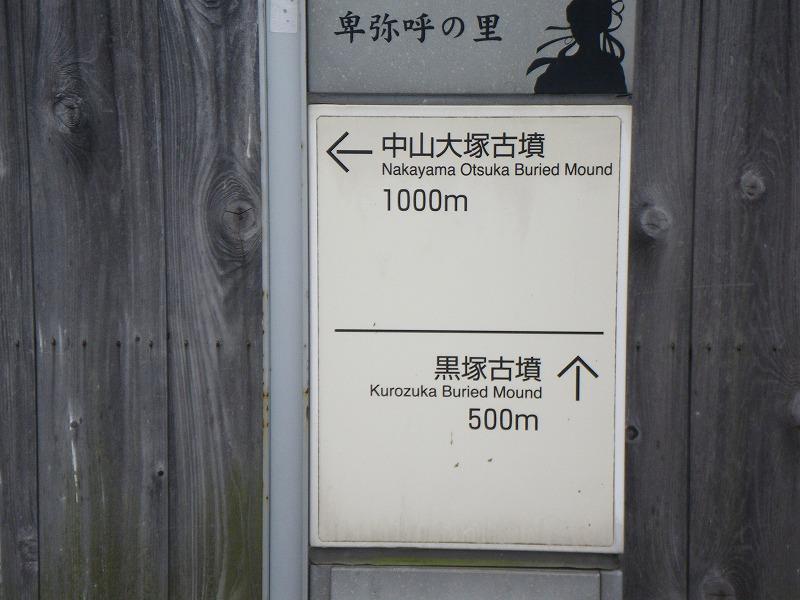 IMGP0805.jpg