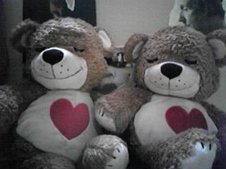 ブーフとゆう名の熊