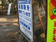 20091208c21.jpg
