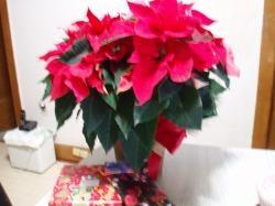 09 12-24 Christmas Card 9