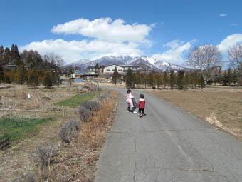 早春の山2