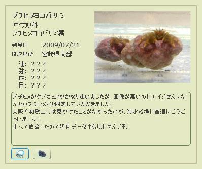 image2009101501040667.jpg