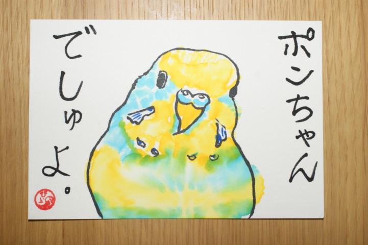 ポンちゃん絵手紙