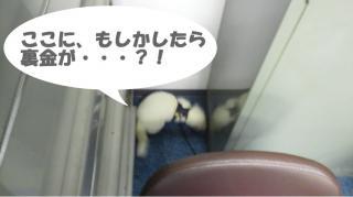 会社の健太郎0912-1