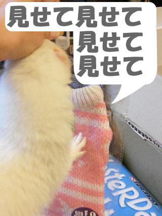 健太郎の荷物1001-5