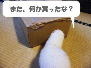 健太郎の荷物1001-1