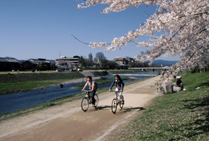 Kyoto Cycling (14)