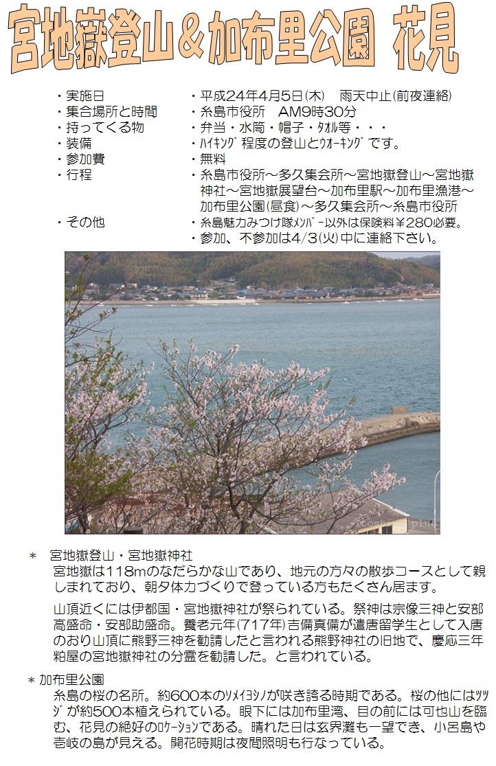 2012.04.05花見3