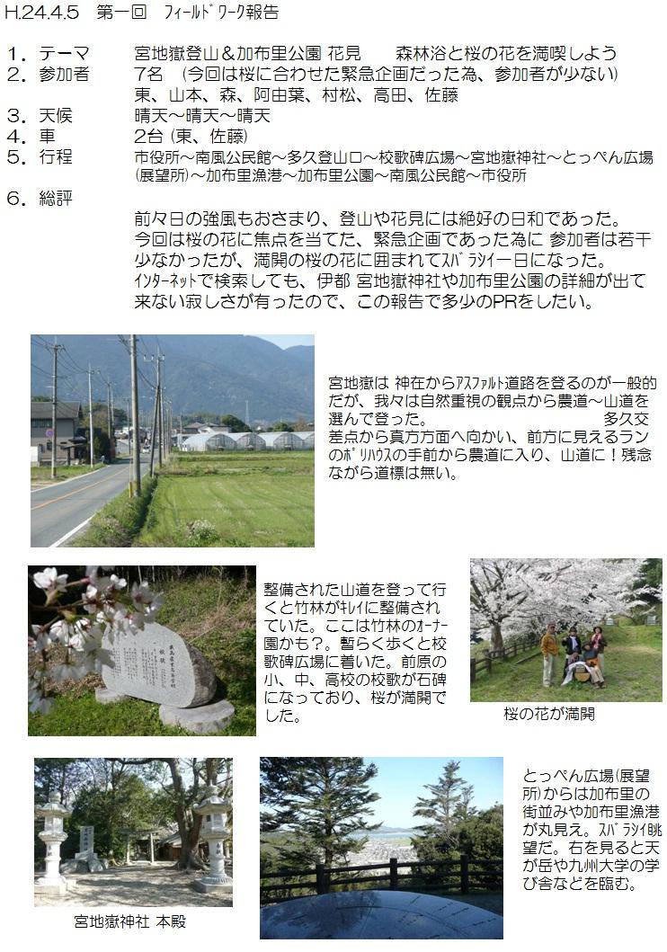 2012.04.05花見1