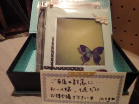 DSC00957.jpg