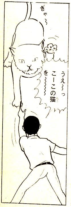 kaine5.jpg