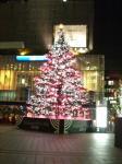 クリスマスツリー2009①